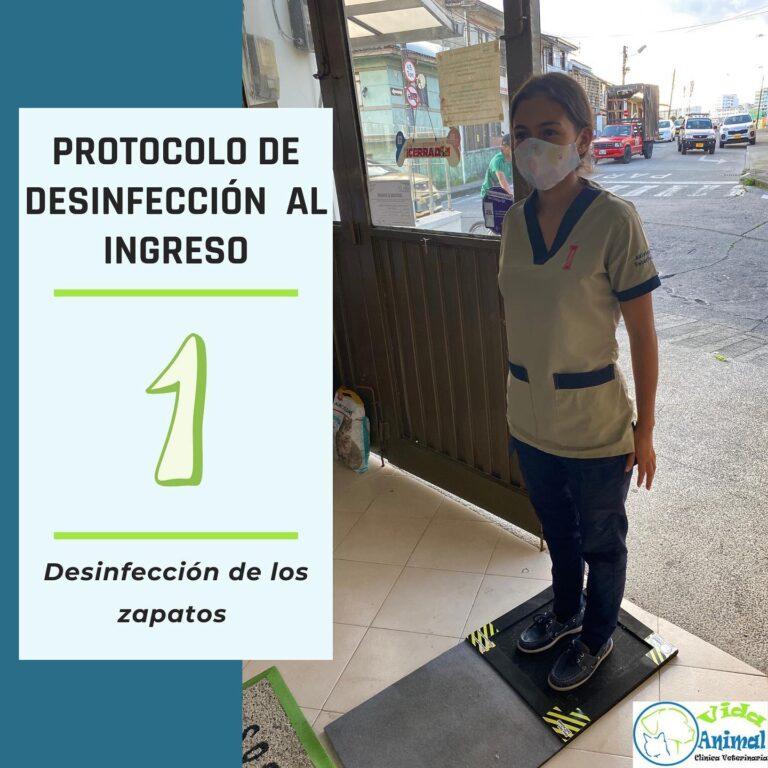 protocolo-desinfeccion-covid-1